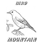 Nevada Day Coloring Book: State Bird, Mountain Blue Bird, 2012 Copyright Christine Hull, Windy Pinwheel