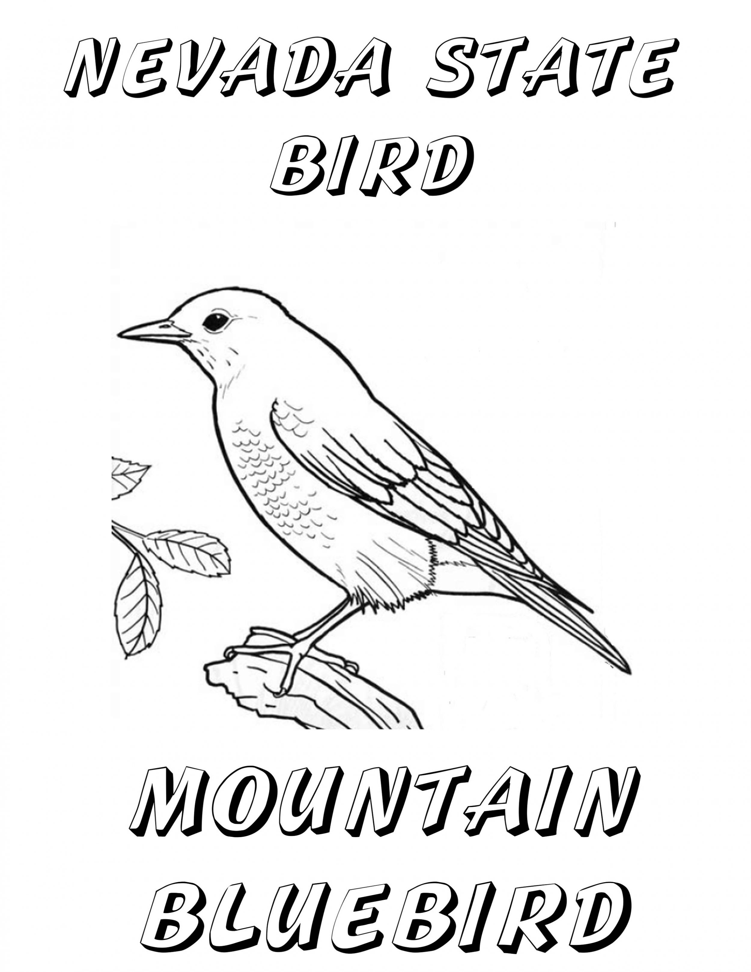 Free oklahoma state bird coloring pages