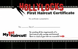 Hollylocks: Baby's first haircut, Source: Hollylocks website